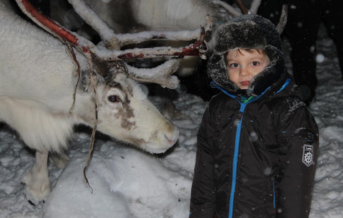 Bambino con renna